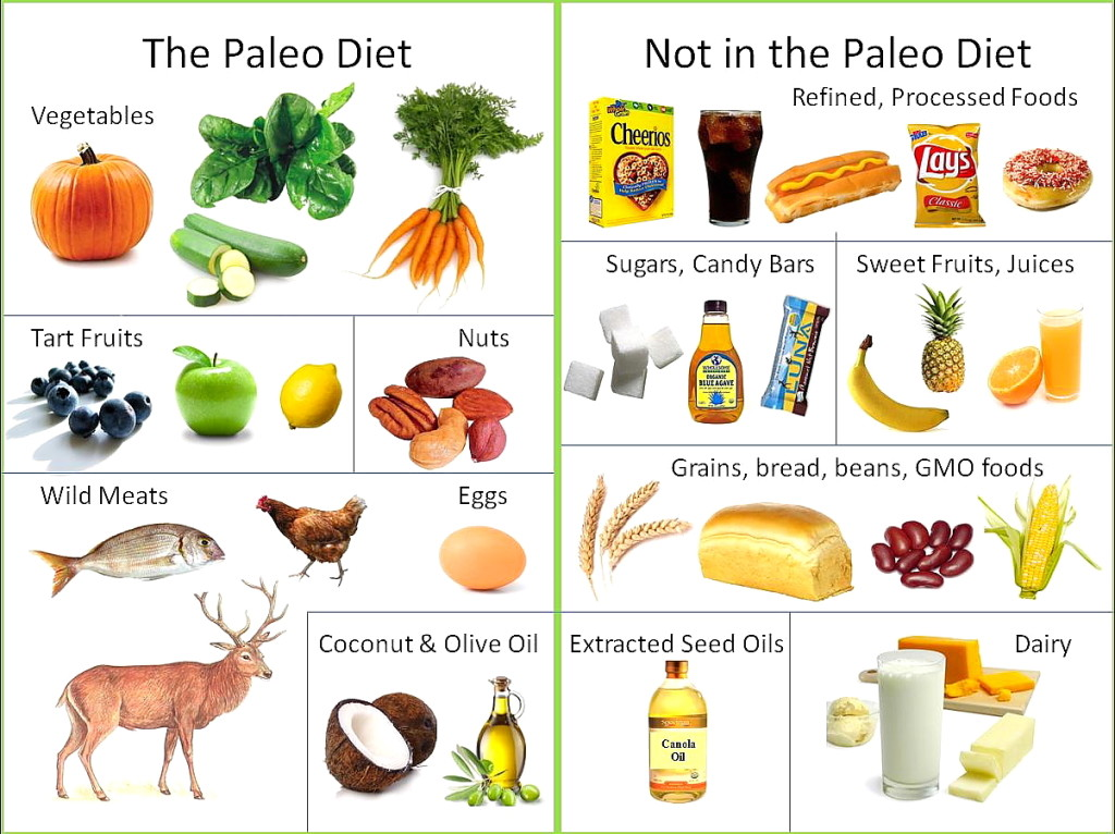 The paleo diet isn't necessarily ideal an evolutionary biologist