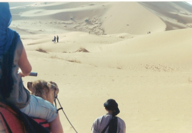 MDS from behind on camel in dunes