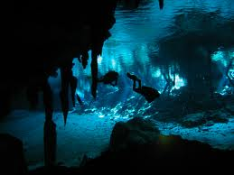 Another Cave Diving Experience